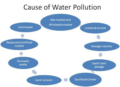 Essay on impact of pollution on environment