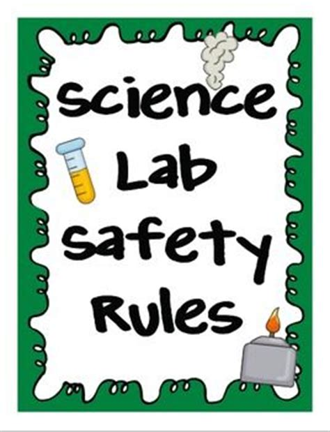 Safety in the lab essay